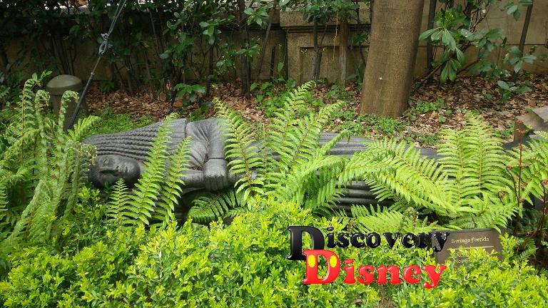 タワテラ瞑想庭園④クレオパトラ