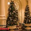 ディズニーランドホテルでクリスマスブッフェ・・・2017.11.18インレポ(1)